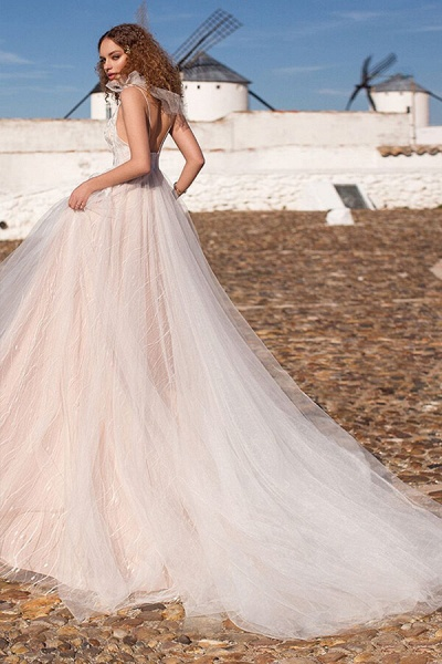 Chic Appliques V-neck Tulle A-line Wedding Dress_3