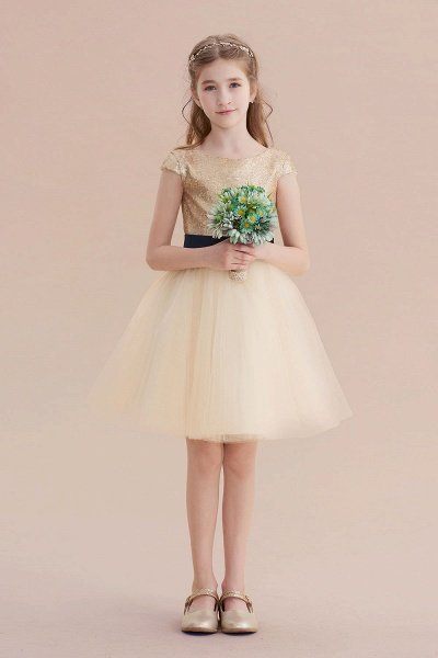 Sequins Tulle Cap Sleeve A-line Flower Girl Dress_4
