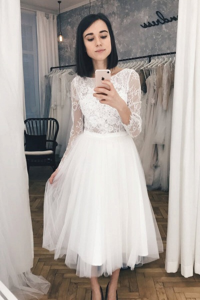 Chic Long Sleeve Lace Tulle A-line Wedding Dress_6