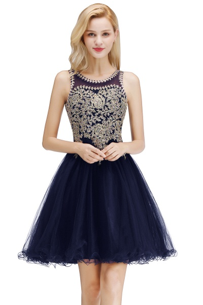 Fabulous Jewel Tulle A-line Evening Dress_2