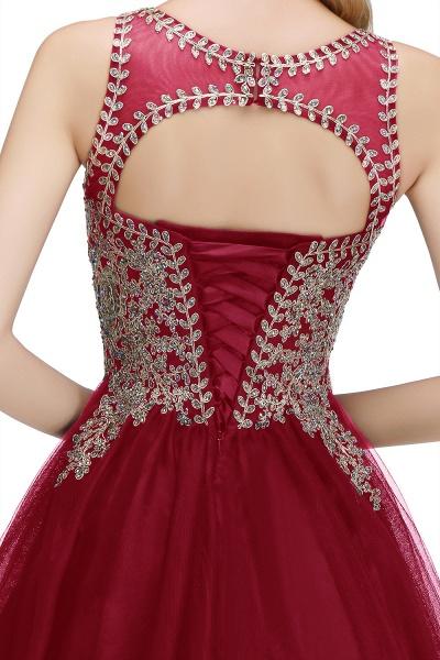 Fabulous Jewel Tulle A-line Evening Dress_28