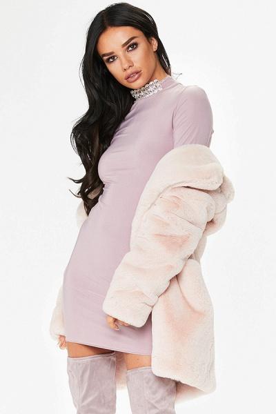 Winter Daily Regular Stand Long Faux Fur Coats_50