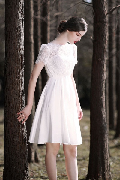 Short Sleeve Lace A-line Short Wedding Dress_5