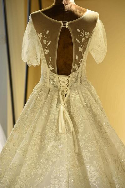 Glorious Short Sleeve Lace Tulle Wedding Dress_5