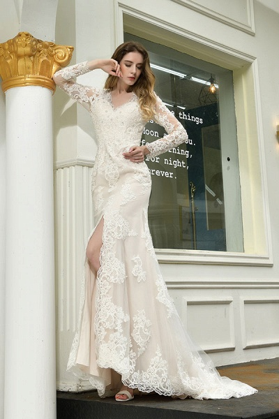 Exquisite V-Neck Long Sleeve Mermaid Wedding Dress_8