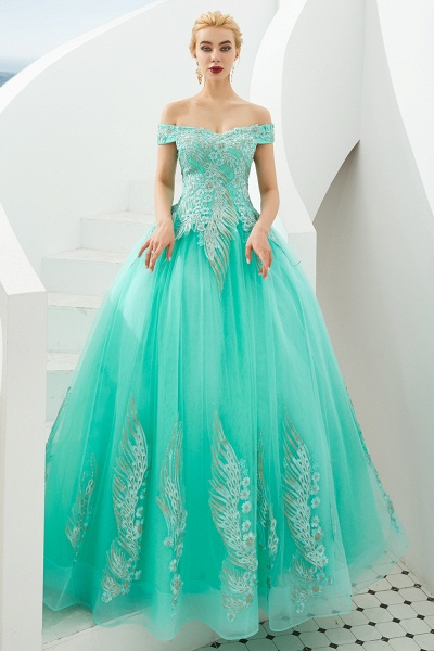 Beautiful Off-the-shoulder Tulle Ball Gown Prom Dress_18