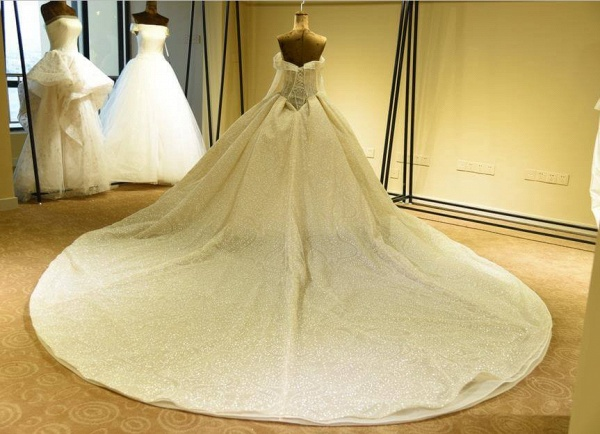 Long Sleeve Lace-up Tulle Ball Gown Wedding Dress_3