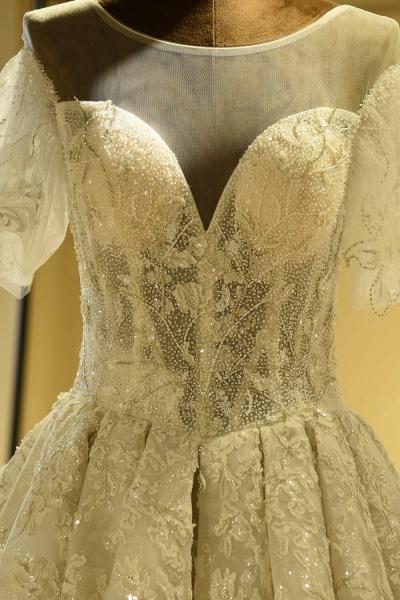 Glorious Short Sleeve Lace Tulle Wedding Dress_4