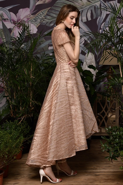 High neck Champange Short Sleeve Sequined Prom Dress_8