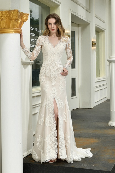 Exquisite V-Neck Long Sleeve Mermaid Wedding Dress_1