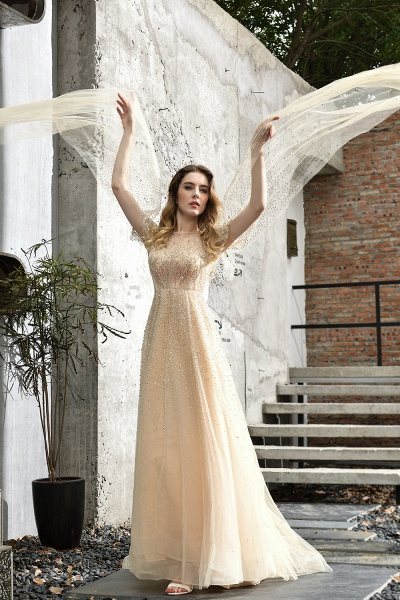 Luxury Shawl Sequined A-line Long Prom Dress_14