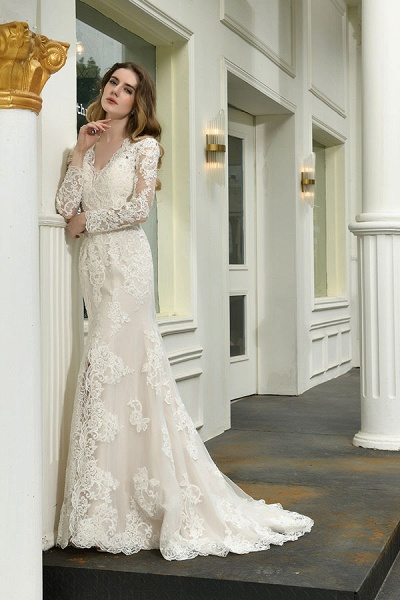 Exquisite V-Neck Long Sleeve Mermaid Wedding Dress_4