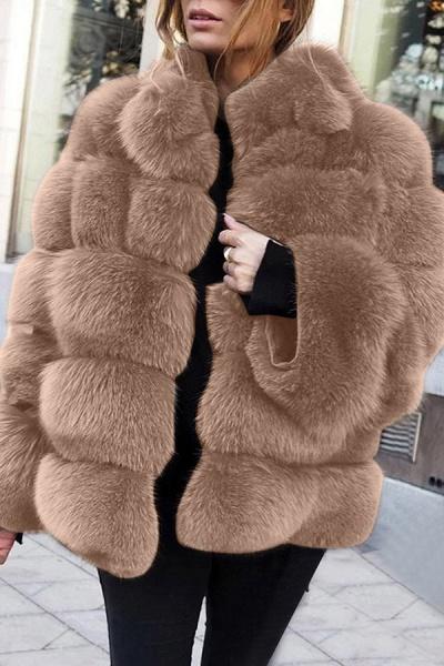 Women's Daily Street Winter Regular Faux Fur Coat_3