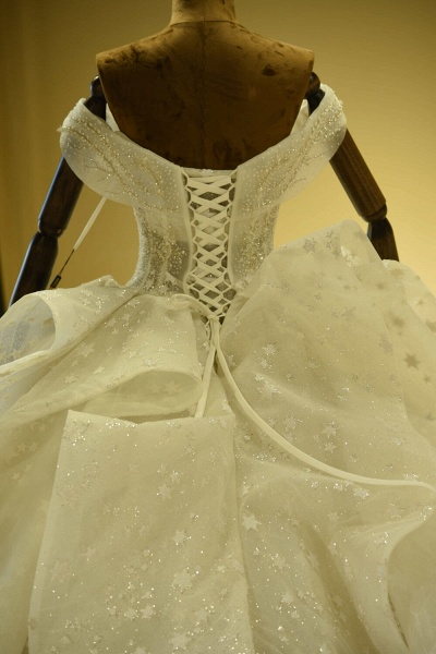 Eye-catching Lace-up Tulle Ball Gown Wedding Dress_6
