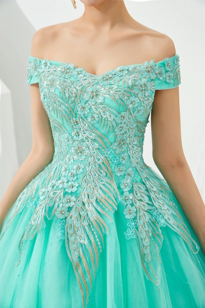 Beautiful Off-the-shoulder Tulle Ball Gown Prom Dress_17