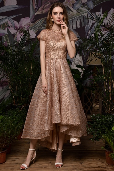 High neck Champange Short Sleeve Sequined Prom Dress_9