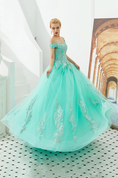 Beautiful Off-the-shoulder Tulle Ball Gown Prom Dress_14
