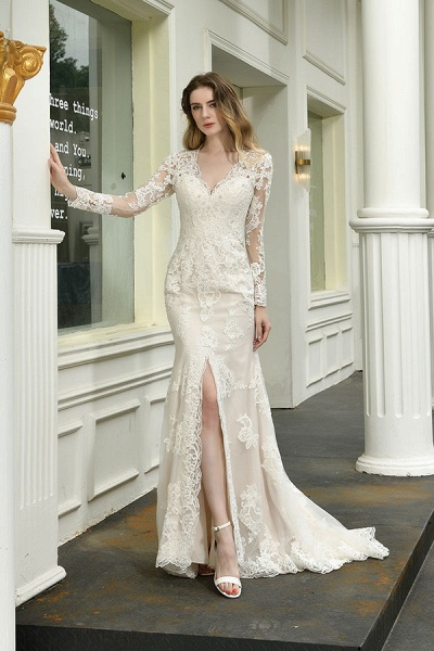 Exquisite V-Neck Long Sleeve Mermaid Wedding Dress_6
