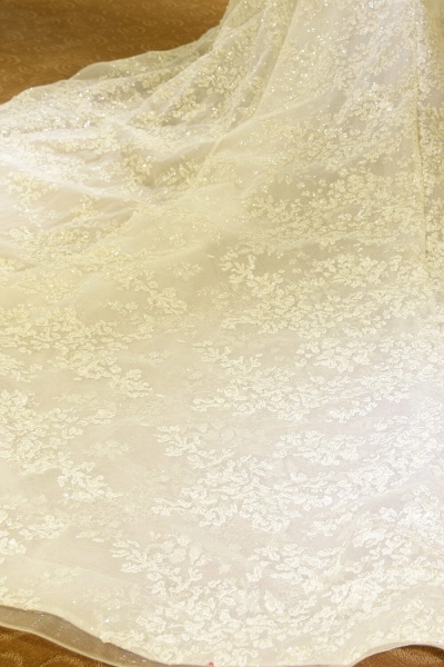 Glorious Short Sleeve Lace Tulle Wedding Dress_7