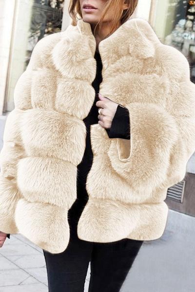 Women's Daily Street Winter Regular Faux Fur Coat_1
