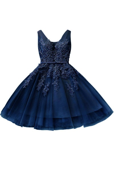 Glorious V-neck Tulle A-line Evening Dress_6