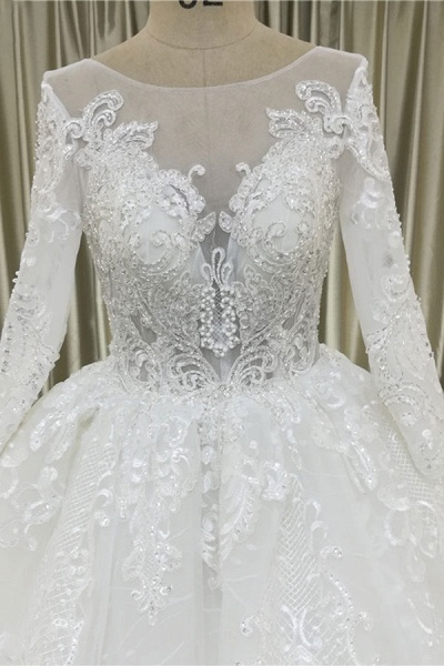 Vintage Appliques Long Sleeve Tulle Wedding Dress_4