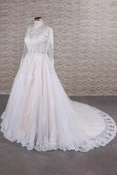 Illusion Appliques Long Sleeve Tulle Wedding Dress_4