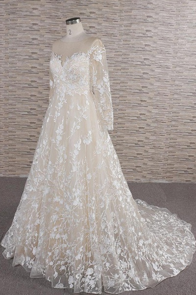 Illusion Long Sleeve Applqiues Tulle Wedding Dress_4