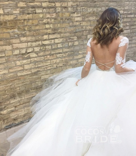 Ivory Sheer Long Sleeves Lace Tulle Backless Beach Wedding Dress_2