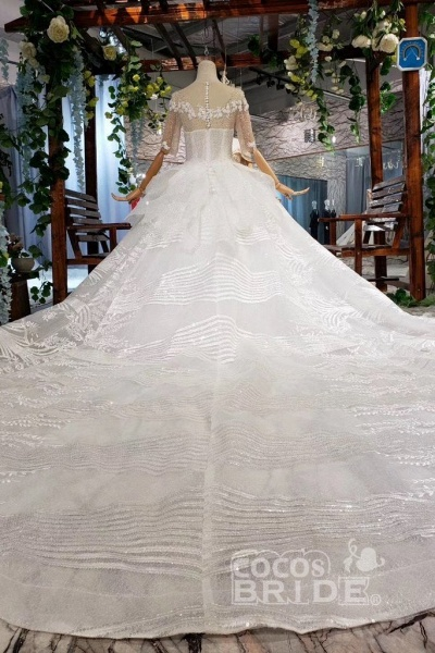 Ball Gown Half Sleeves Lace with Sequins Sheer Neck Long Wedding Dress_5