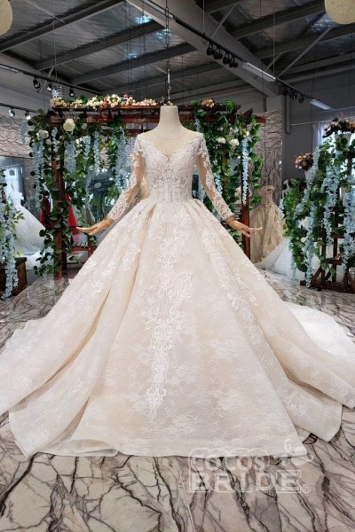 Princess Sleeves Sheer Neck Ball Gown Lace Long Wedding Dress_5