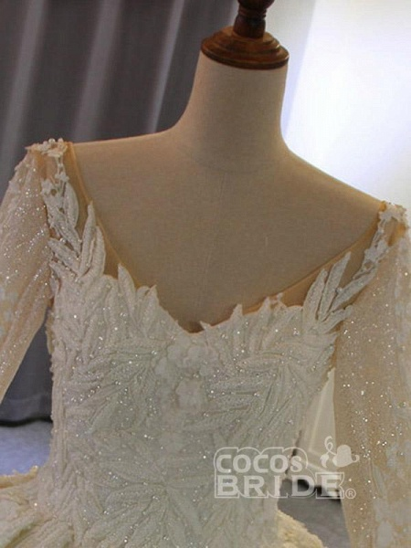 Classical V Neck Long Sleeve Ball Gown Wedding Dresses_5
