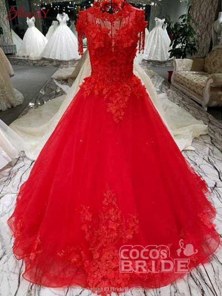 Awesome Appliques Tulle Ball Gown Wedding Dresses_2