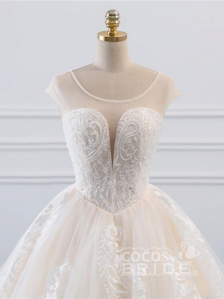 Lace-Up Ball Gown Wedding Dresses_4