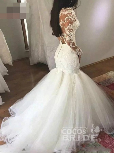 Mermaid Sleeves V Neck Long Lace Appliques Wedding Dress_3