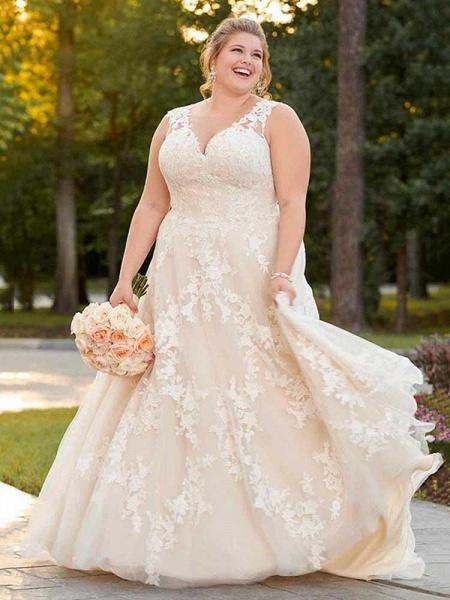 Gorgeous V Neck Appliques Lace Bowknot Tulle Wedding Dresses_1