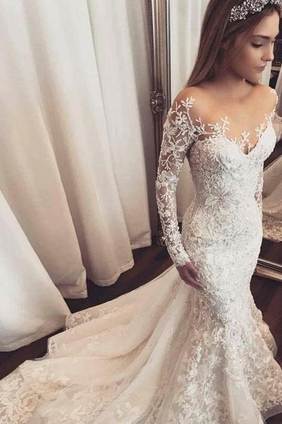 Gorgeous Mermaid Illusion Long Sleeves Tulle Appliques Beach Wedding Dress_1