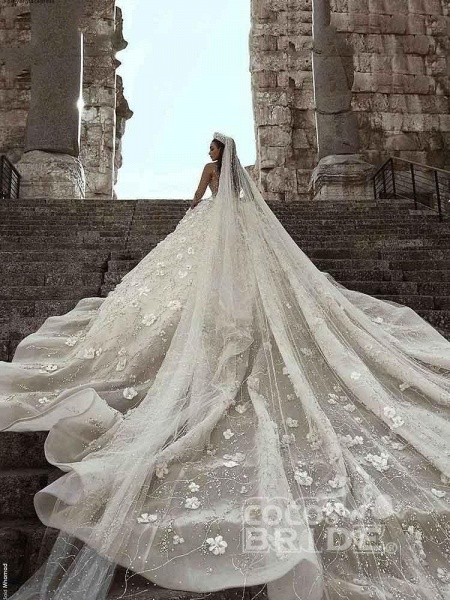 Luxury Long Sleeve V Neck Royal Ball Gown Wedding Dresses_2
