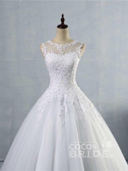 Glamorous Tulle Lace Ball Gown Wedding Dresses_3