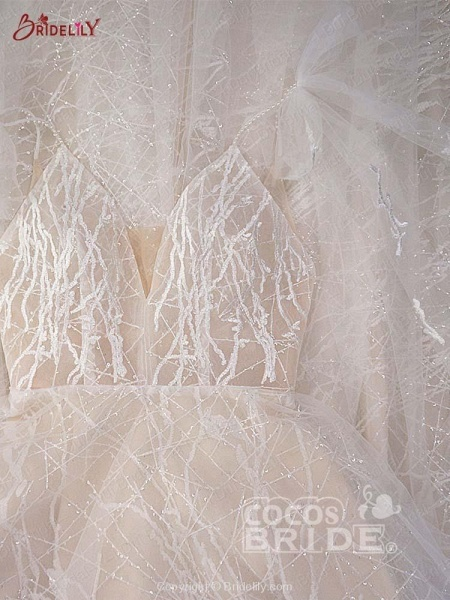 Shinny Deep V-Neck Backless A-Line Wedding Dresses_2