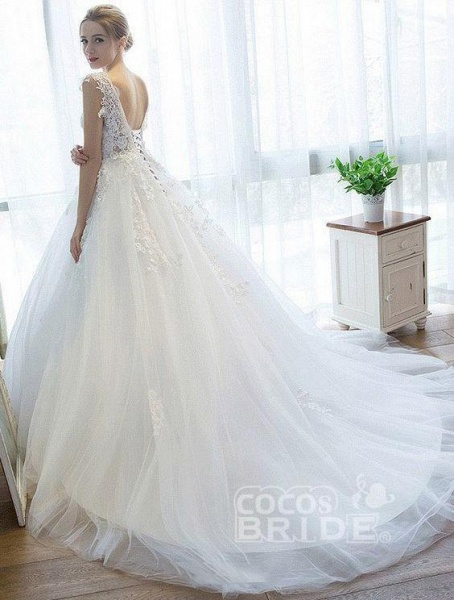 Ball Gown V Neck Tulle Court Train Appliques Lace Backless Wedding Dress_2