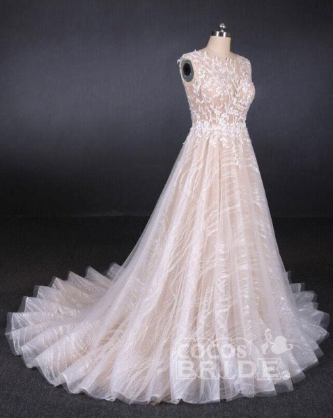 Puffy Sleeveless Lace Elegant A Line Backless Wedding Dress_3