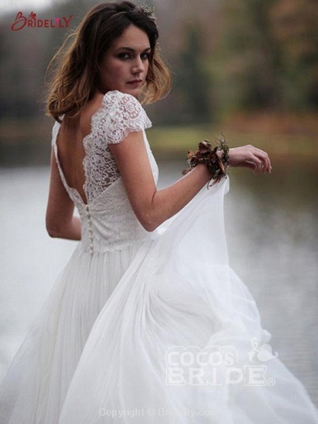 V-Neck Cap Sleeves Tulle Backless Boho Wedding Dresses_2
