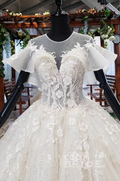 Gorgeous Ball Gown Big Princess Sleeves Wedding Dress_7
