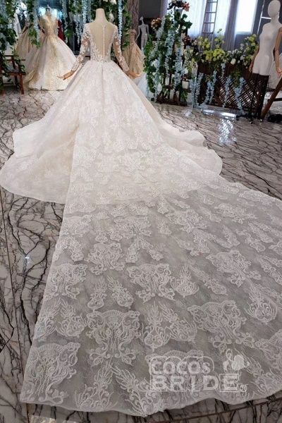 Princess Sleeves Sheer Neck Ball Gown Lace Long Wedding Dress_10