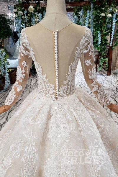 Princess Sleeves Sheer Neck Ball Gown Lace Long Wedding Dress_2