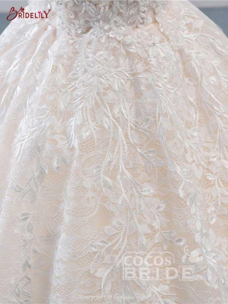 Glamorous Lace Tulle Ball Gown Wedding Dresses_6