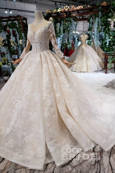 Princess Sleeves Sheer Neck Ball Gown Lace Long Wedding Dress_6
