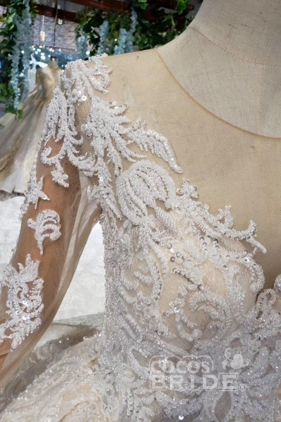Princess Sleeves Sheer Neck Ball Gown Lace Long Wedding Dress_3