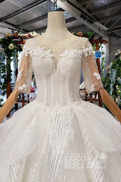 Ball Gown Half Sleeves Lace with Sequins Sheer Neck Long Wedding Dress_6
